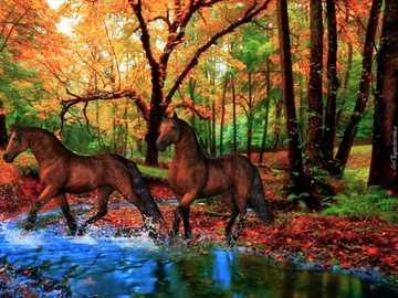 Cavalos na floresta, outono - Dois cavalos na floresta, Rzeczka-. Outono