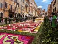 Genzano Flower Carpet Festival Region Lazio - Genzano Flower Carpet Festival Region Lazio