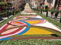 Genzano Flower Carpet Festival Region of Lazio - Genzano Flower Carpet Festival Region of Lazio