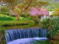Ninfa Garden Lazio Region Italy - Ninfa Garden Lazio Region Italy