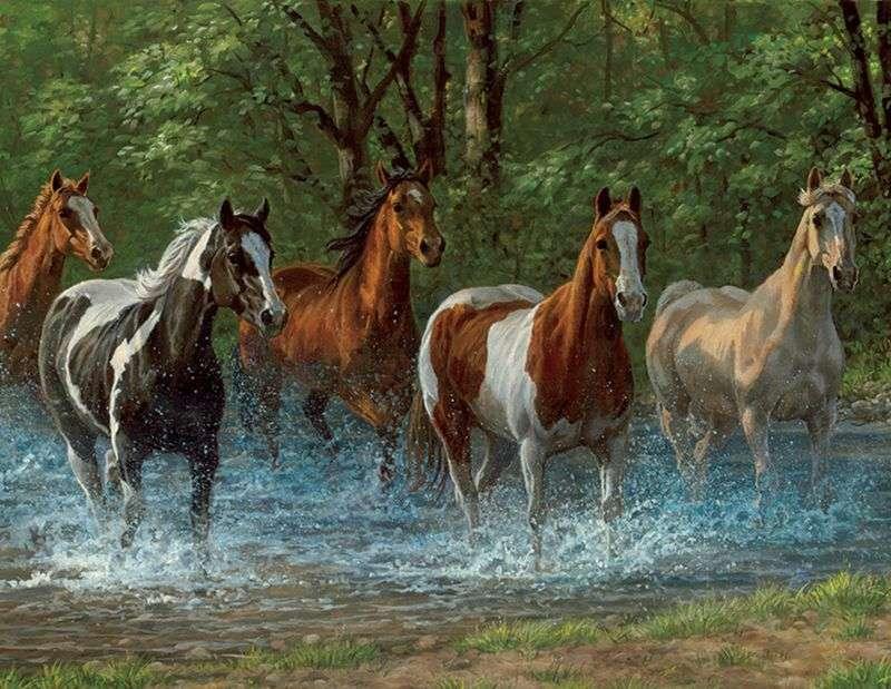 Śliczne konie