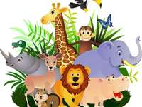 Safari animals - find safari animals