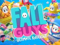 Fall Guys - You played Fall guys, right? Well, play it, go and have fun