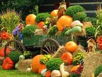 Autumn composition - Autumn Composition, Pumpkins .....