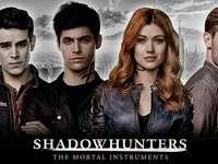 schaduwjagers - Shadowhunters cast biedt mondelinge geschiedenis als finale van seizoen 3