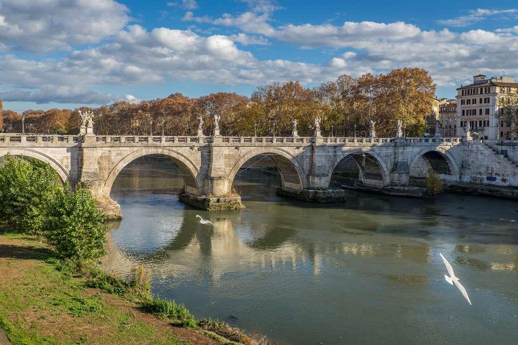 Roma Ponte Sisto sul Tevere (13×9)