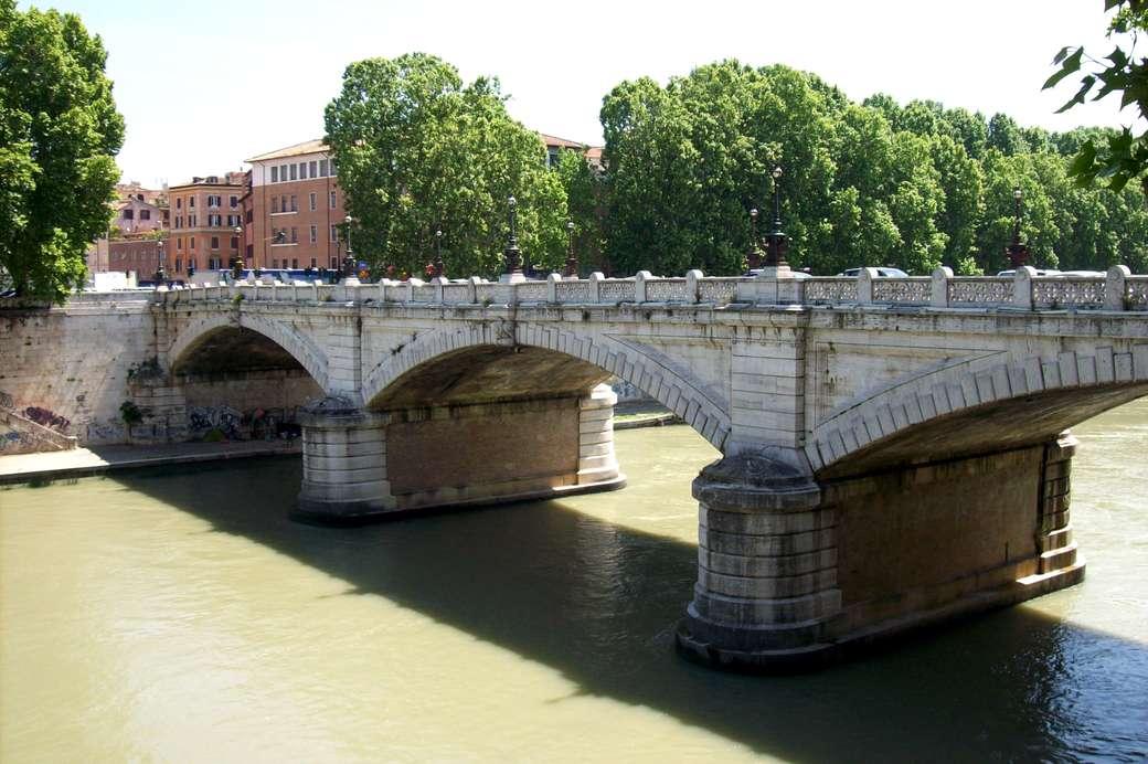 Roma Ponte Mazzini sul Tevere (13×9)