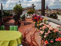 Rome roof terrace with roses