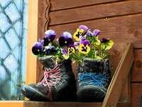Pensamientos en zapatos decorativos