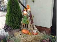 Decoraciones de cosecha en Goczałkowice-Zdrój - m ...........................
