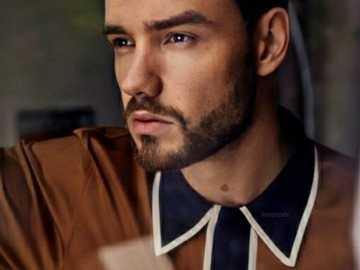 Liam pupi payne - Liam puzzle frumos nimic care sărută în kola