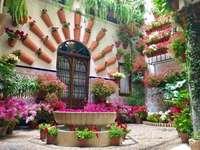 Córdoba- fiesta de los patios locales - m .........................