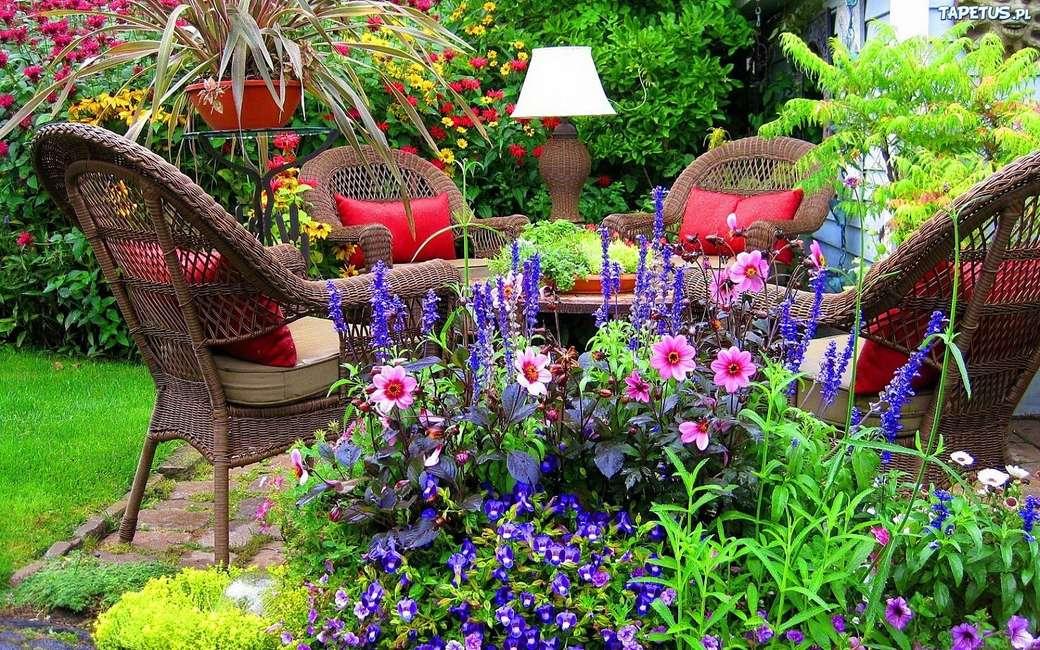 rest around flowers in the garden - m (12×8)