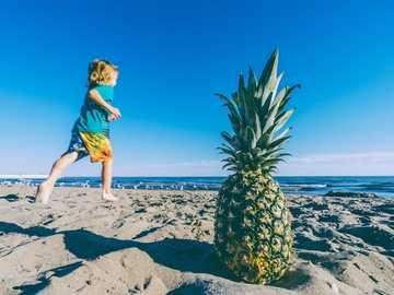 Correndo em Port Stanley - foto de foco seletivo de abacaxi verde e amarelo perto de garoto correndo vestindo camiseta azul fot