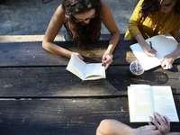 Schüler lernen zusammen - Frau, die Buch liest, während sie auf Stuhl sitzt.