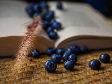 bayas azules en cesta tejida marrón - bayas azules y trigo en un libro abierto.