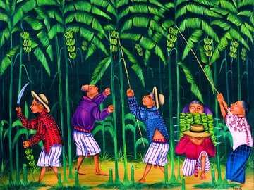 Lowering bananas - Matias Gonzalez Chavajay, Guatemala