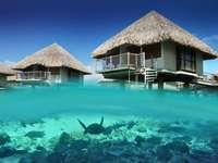 Resort in Bora Bora - Beautiful Resort in Bora Bora