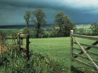Storm in the field - Summer storm in the field