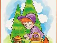 El niño recoge setas - El niño recoge unos hongos que se encuentran en el bosque.