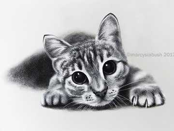 a cat drawn with charcoal - I drew it myself with artistic charcoal