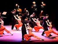 Tango Show - Tangoshow med live orkester