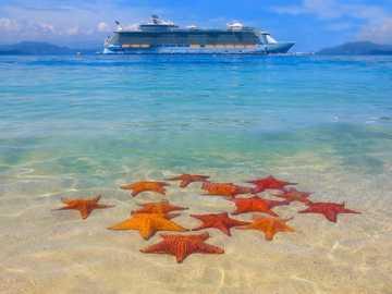 Um cruzeiro pelos mares e oceanos. - Enigma da paisagem.