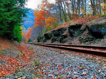Outono nos trilhos da ferrovia. - Enigma da paisagem.