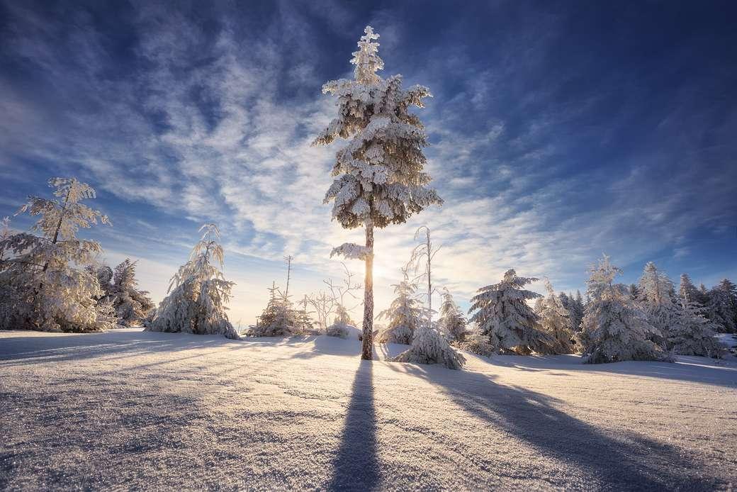 Mrazivé slunce - Slunce v zimě. Zimní krajina (11×8)