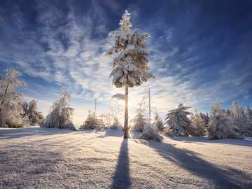 IJzige zon - De zon tijdens de winter. Winter landschap