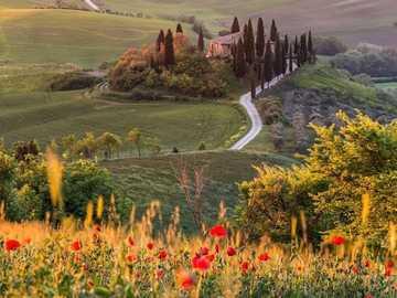 Een van de 44 mooiste steden van Toscane. - Een prachtig plaatje, prachtige klaprozen, zie je van een afstand