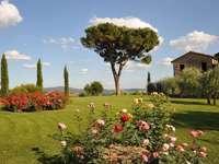 Casas de férias em Chianti na Toscana