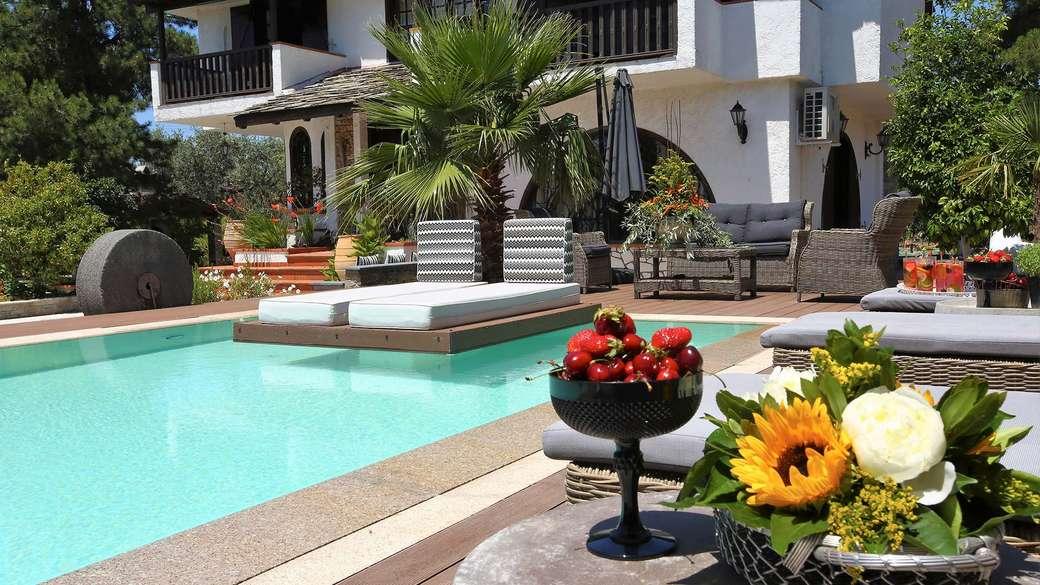 Maison avec piscine - Maison avec piscine, fruits, cocktails, palmier, fleurs (14×8)