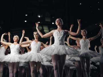Black Swan-optreden live in Immerse in 2017. - groep ballerina's dansen terwijl ze beide handen opsteken. Orlando, Verenigde Staten