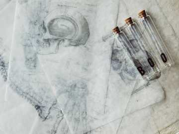 three clear glass tubes - I was feeling some Halloween spirit in studio today after I found some of my old wax transfers of me