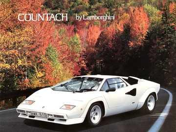 Lamborghini Countach - Detta är ett foto av en superbil från 1980-talet.