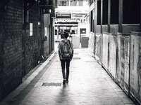 aleja w Brisbane - człowiek idący między betonowymi budynkami. Brisbane, Australia