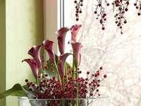 flowers on the window - m ........................