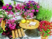 blommor på terrassen