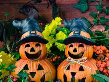 Abóboras - Halloween - m ....................