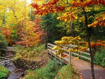 Bridge And River, Autumn - Bridge And River, Autumn.