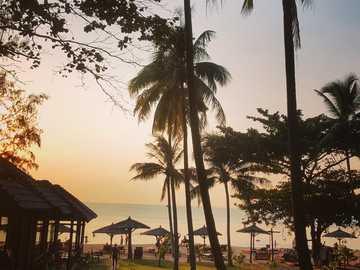 L'isola paradisiaca di Phu Quoc in Vietnam ?? - silhouette di palme vicino al corpo d'acqua durante il giorno. Phú Quốc, Phu Quoc, Kien Gian