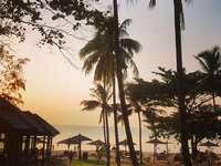¿La isla paradisíaca de Phu Quoc en Vietnam? - silueta de palmeras cerca del cuerpo de agua durante el día. Phú Quốc, Phu Quoc, Kien Giang, Vie