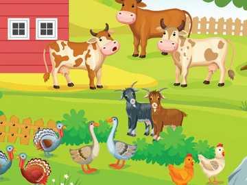 zwierzęta na wsi - m........................