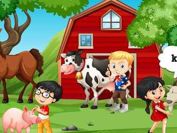animaux à la maison - m ........................
