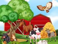 animals in the countryside - m ........................