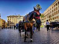 Carriage in downtown Rome - Carriage in downtown Rome
