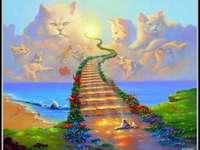 Regenbogenbrücke - m ....................