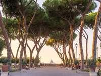 Aranci Park i Rom - Aranci Park i Rom med utsikt över Peterskyrkan