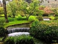 A beautiful garden in Rome - A beautiful garden in Rome